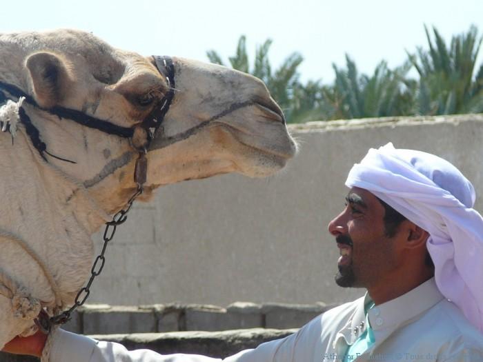 heberges-chez-les-bedouins-en-egypte-4